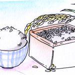 コレステロール上昇を抑えるには食事が肝心!!白米に+●●?