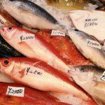焼いたり煮たり刺身にしたり…コレステロール値を下げる効果的な魚の食べ方